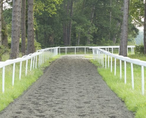 All weather horse gallop construction with rails.